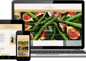 website design wix